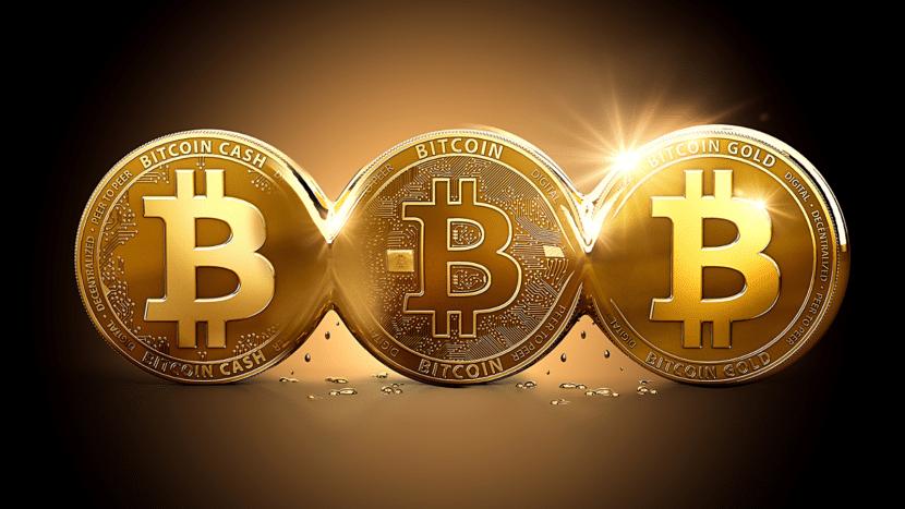 Tipos (Forks) de Bitcoin