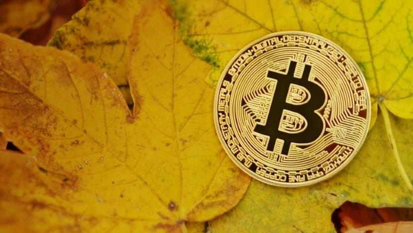 bitcoin gold y su forma de funcionar